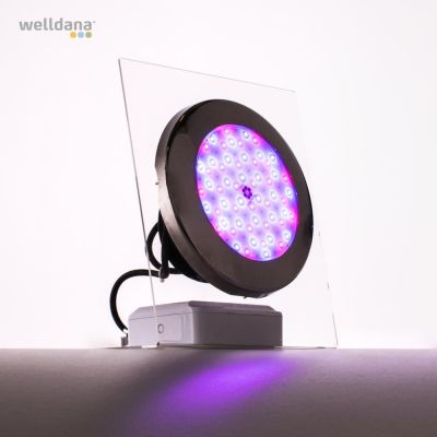 Moonlight LED lamper